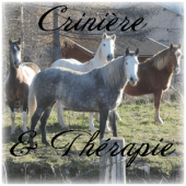 Crinière & Thérapie